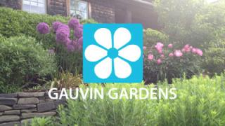 Gauvin Gardens